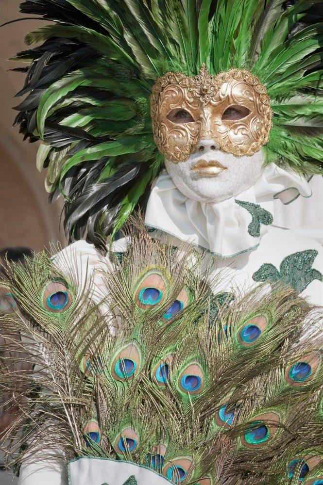 wundervolles Kostüm mit Federn